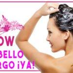 Shampoo de cebolla, sabias ¿porque hace crecer tu cabello rápidamente?