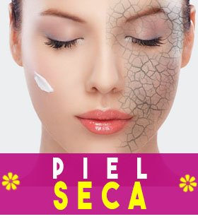 todo sobre la piel seca, tipos, tratamiento, piernas, manos, cara, maquillaje
